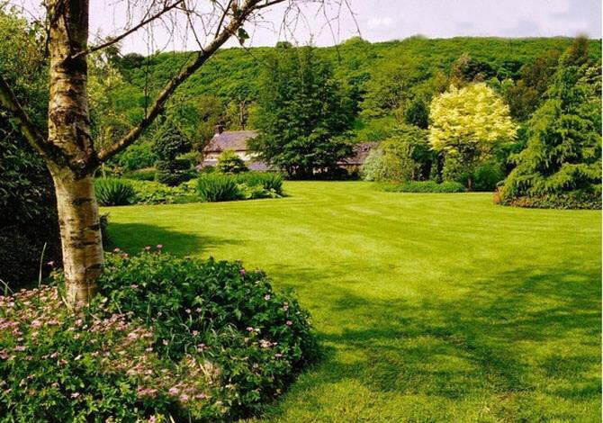Garden Services, Maintenance and Lawn Mowing Melbourne Wide